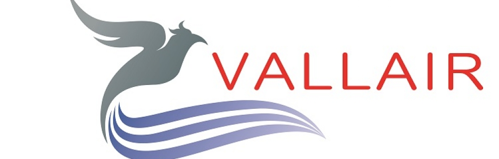 VALLAIR SOLUTIONS>